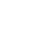 The Dorothy Strelsin Foundation