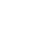 Visual Lizard Inc.